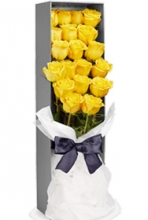 2 Dozen Yellow Roses in box